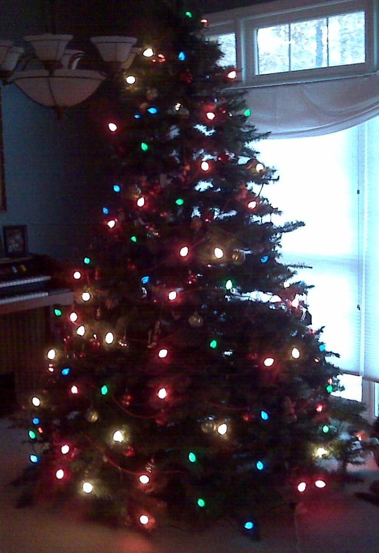 tree081